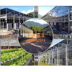 承建养殖大棚网址图片