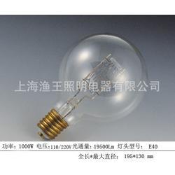 水下集鱼灯、水下集鱼灯、渔王照明电器品质保证(优质商家)图片