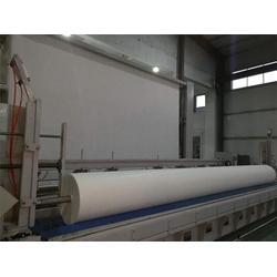 长丝聚酯胎供应商,山东海王(在线咨询),七台河长丝聚酯胎图片