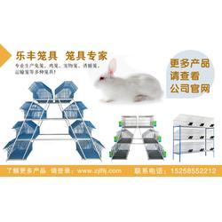 购买宠物笼-乐丰笼具厂-江西宠物笼图片