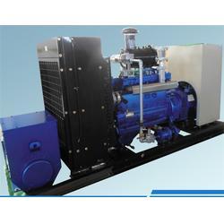 沼气发电机_重能动力(在线咨询)_小型沼气发电机厂家图片