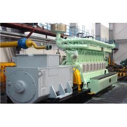 生物质发电机 重能动力 生物质发电机图片