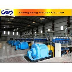 重油发电,重油发电机厂,重能动力图片