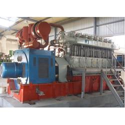 重能动力 沼气发电机组 沼气发电机组销售商图片