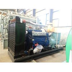 重能动力(图),天然气小机组,天然气发电图片