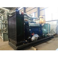 天然气发电机、重能动力图片