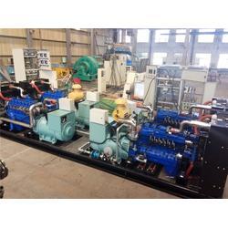 天然气发电,重能动力,天然气发电 小机组图片