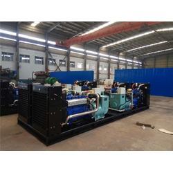 天然气发电机组、重能动力、1200kw天然气发电机组图片