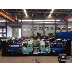 天然气发电机、潍柴天然气发电机组、重能动力图片