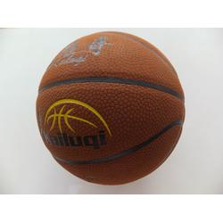 西藏篮球|PVC篮球|益佳体育用品图片