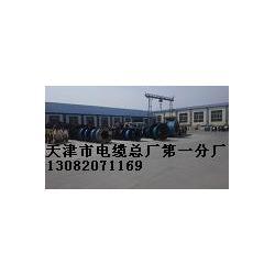 氟塑料软电缆生产厂家图片