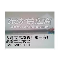 供应HYA HYA22 HYV22 HYAT22 HYY23 HYYT23室内通信电缆图片