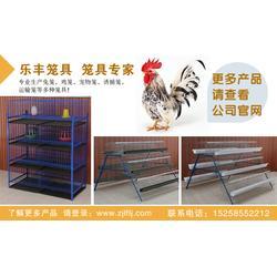 自动喂料养鸡笼,贵州鸡笼,乐丰笼具(多图)图片