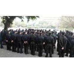 羅湖保安服務、特種犬護衛保安服務(在線咨詢)、深圳保安服務圖片