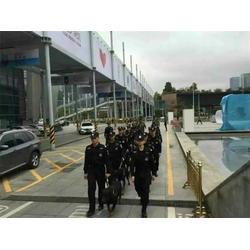 深圳特种保安公司|特种犬护卫保安服务(在线咨询)图片
