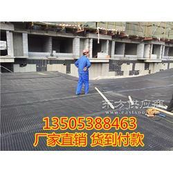20高塑料夹层板 耐根穿刺排水板厂家图片