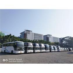 花都大巴车出租、青旅车队值得信赖、44座大巴车出租图片
