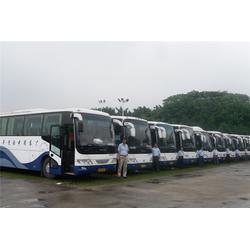 萝岗大巴车出租_青旅车队准时到达_大巴车出租多少钱一天图片