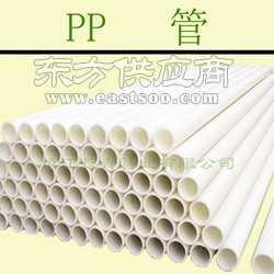 厂家供应工程专用PP管 聚丙烯管 全新料 各种规格 低压硬质图片