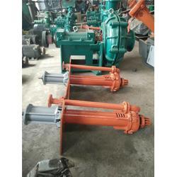 双能泵业,输送粗颗粒高浓度渣浆液下渣浆泵,白银液下渣浆泵图片