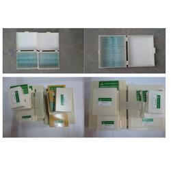 苔藓植物玻片标本、玻片、雨林教育图片