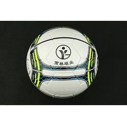 辽阳足球|雨林教育|特制足球厂家图片