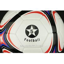 足球特制|襄樊足球|雨林教育图片