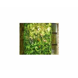 合肥鑫磊仿真植物(圖)、仿真植物廠家、安徽仿真植物