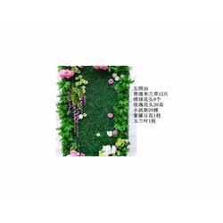 室内仿真植物-安徽仿真植物-合肥鑫磊景观园艺工程(查看)图片