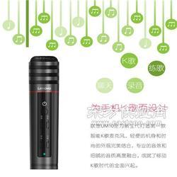 Lenovo/联想UM10唱吧麦克风苹果安卓手机全民K歌直播话筒带声卡图片