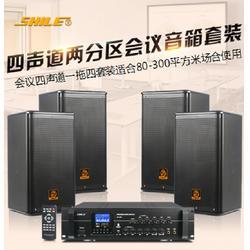 丽江会议音响|狮乐音响|优质会议音响图片
