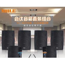 多功能壁挂式音响-狮乐音响(在线咨询)济源壁挂式音响图片
