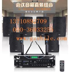 广州壁挂音响、狮乐音响(在线咨询)、广州壁挂音响图片