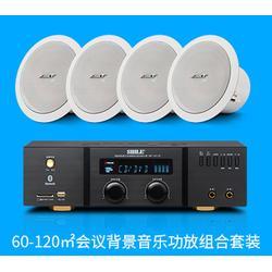广州会议室音响套装-会议音响厂家-200平会议室音响套装图片