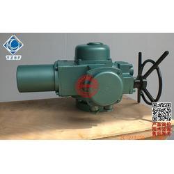 扬州苏阀(图),DQW电动装置,DQW电动装置图片