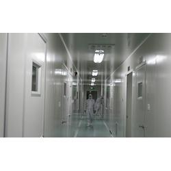 无菌净化室,漳州净化室,福建瀚森净化室(查看)图片