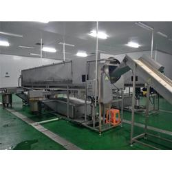 富瑞德食品机械 小型核桃仁去皮机-杭州核桃仁去皮机图片