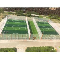 渤海体育(在线咨询)、笼式足球场、笼式足球场安装图片