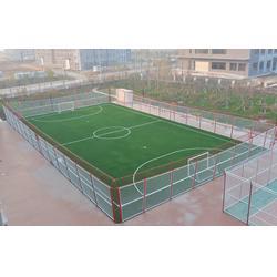 鸟巢式笼式足球场(图) 笼式围网足球场 渤海体育图片