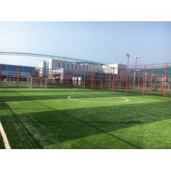 笼式足球场设计_笼式足球场_渤海体育图片