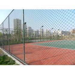 笼式球场_笼式球场建设(图)_渤海体育图片