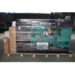 【雷鸣发电机】,安阳康明斯柴油发电机,低噪音康明斯柴油发电机图片