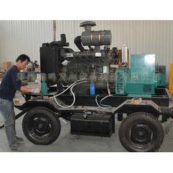 柴油发电机-山东柴油发电机制造厂电话 雷鸣发电设备图片