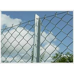 吉林运动场围网、运动场围网报价、卓诺丝网(优质商家)图片