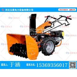 江湖传说小型扫雪机械专卖_小型扫雪机热销厂家图片