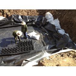 雨水收集系统-三门峡雨水收集-雨乐环保(查看)图片