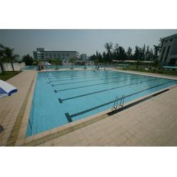 龙岩建造游泳池|雨乐游泳池水处理|建造游泳池生产厂家图片