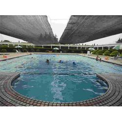 露天游泳池设计、合肥游泳池、雨乐大型游泳池图片