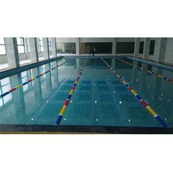游泳池净水设备、津市游泳池、雨乐游泳池图片