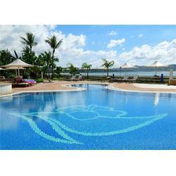 安庆游泳馆|建造游泳馆需要多少钱|雨乐环保(优质商家)图片